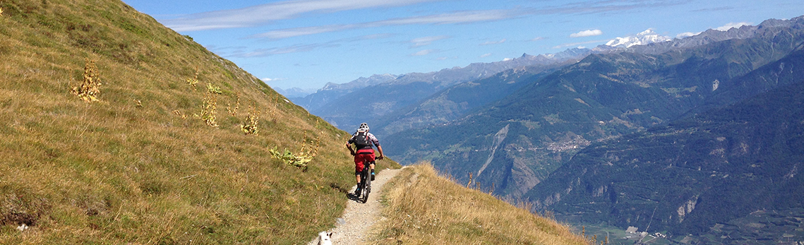 Need a MTB guide in Valais?