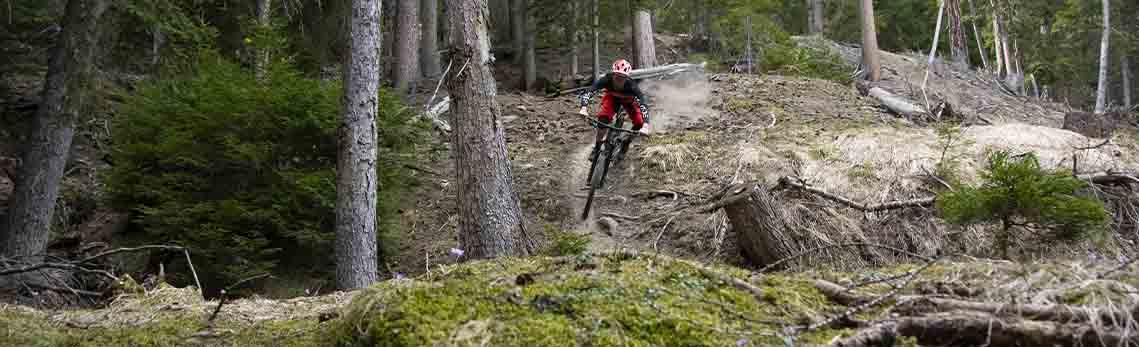 MTB guiding and coaching in the Swiss Alps